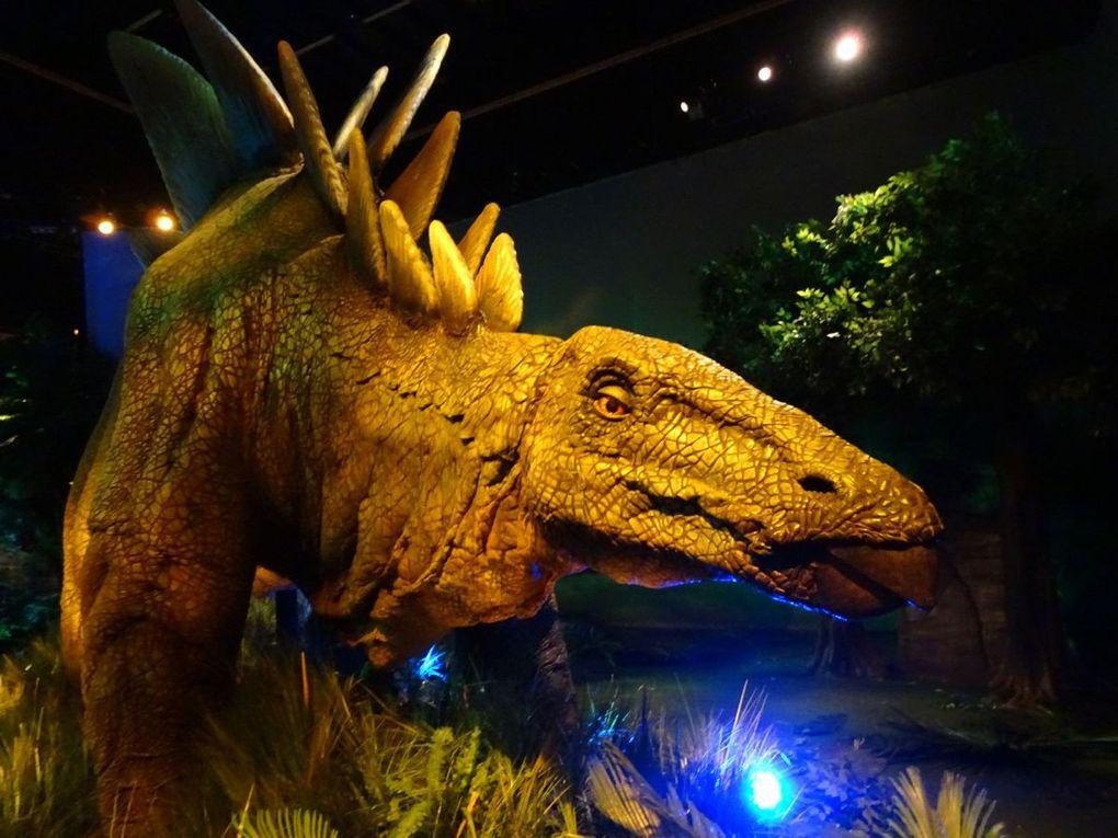 Visite de l'expo Jurassic World