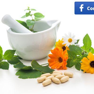 Plantas analgésicas, para aliviar el dolor de forma natural