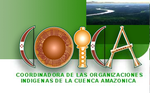Bolivia: COICA impulsa estrategias para enfrentar megaproyectos