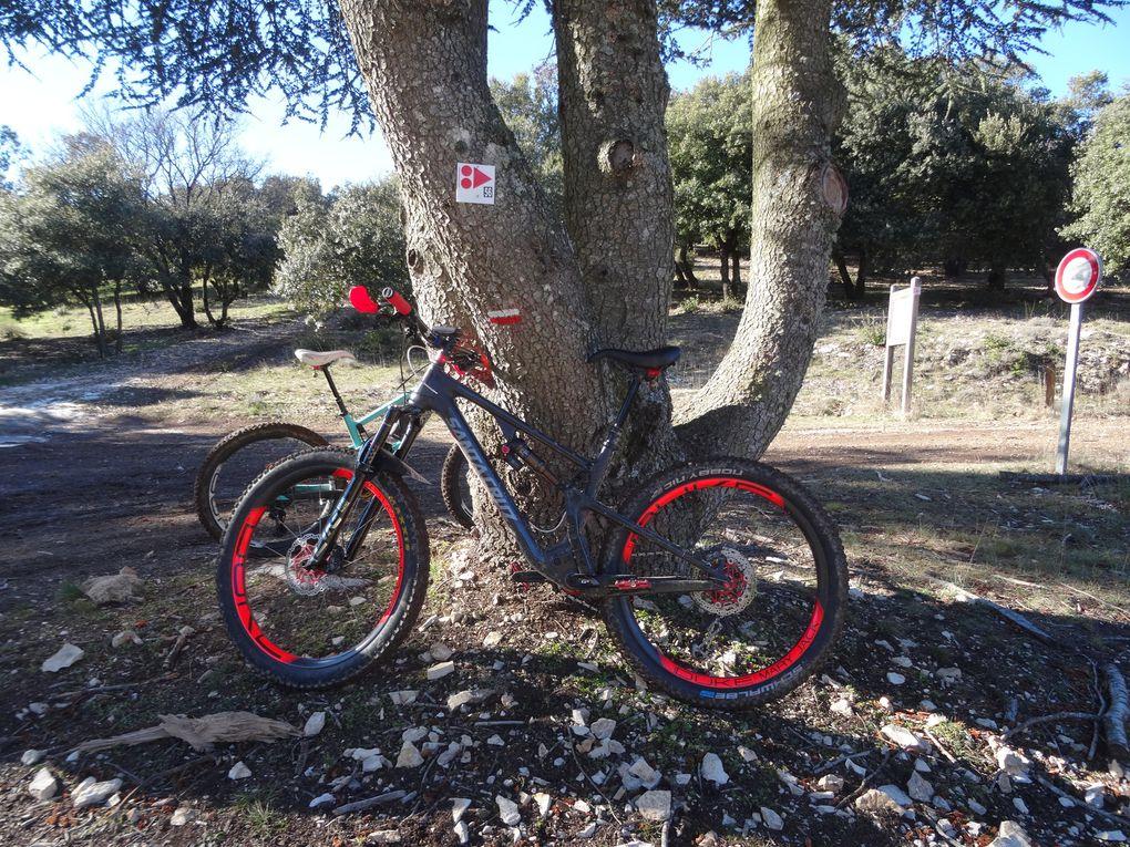 Espace VTT Provence-Luberon-Lure, parcours n°56 noir au départ de Céreste (04) le 17/01/2021