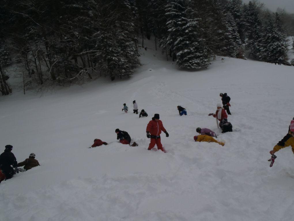 Album - Ski-2012