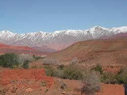 the Morocco' s Vineyard