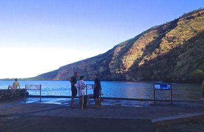 Nage avec les dauphins à Kealakekua Bay, le 19 février 2015