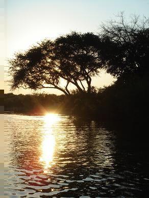 Zimbabwe - Botswana - Swaziland - Afrique du Sud