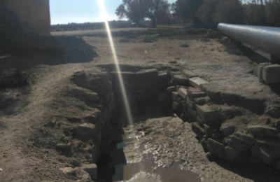 La zone humide de Ain Skhouna (Saida) menacée par des pompages d'eau (Témoignage)