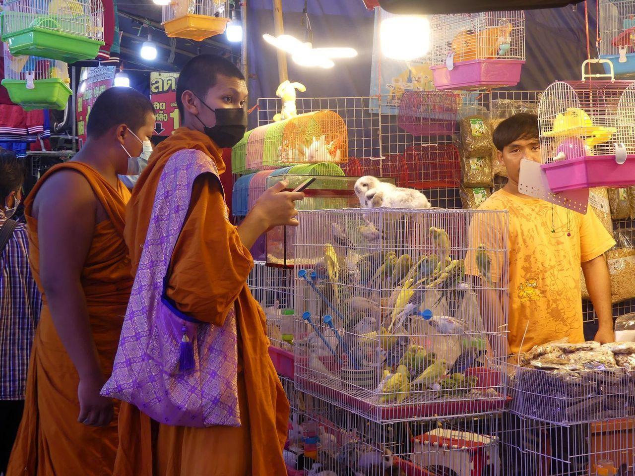 Visages de Thaïlande (21-15)