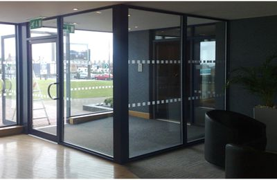 Automatic Frameless Doors and Window in London
