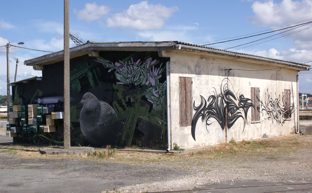 Album - Graffitis-Bordeaux-Tom-003