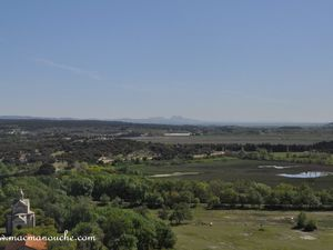 Vue panoramique sur les marais asséchés pour être cultivés et au loin on distingue la ville d'Arles.