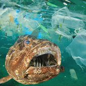 The seabed littered with microplastics, according to a new study - Yachting Art Magazine