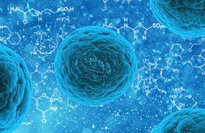Santé : les MICI, ces maladies que l'on ne connaît pas encore bien