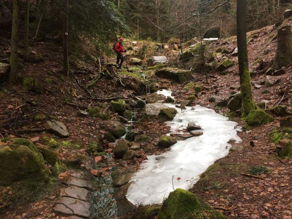 Escapade pluvieuse autour du Grand Rosskopf (811m) -  11/03/2018