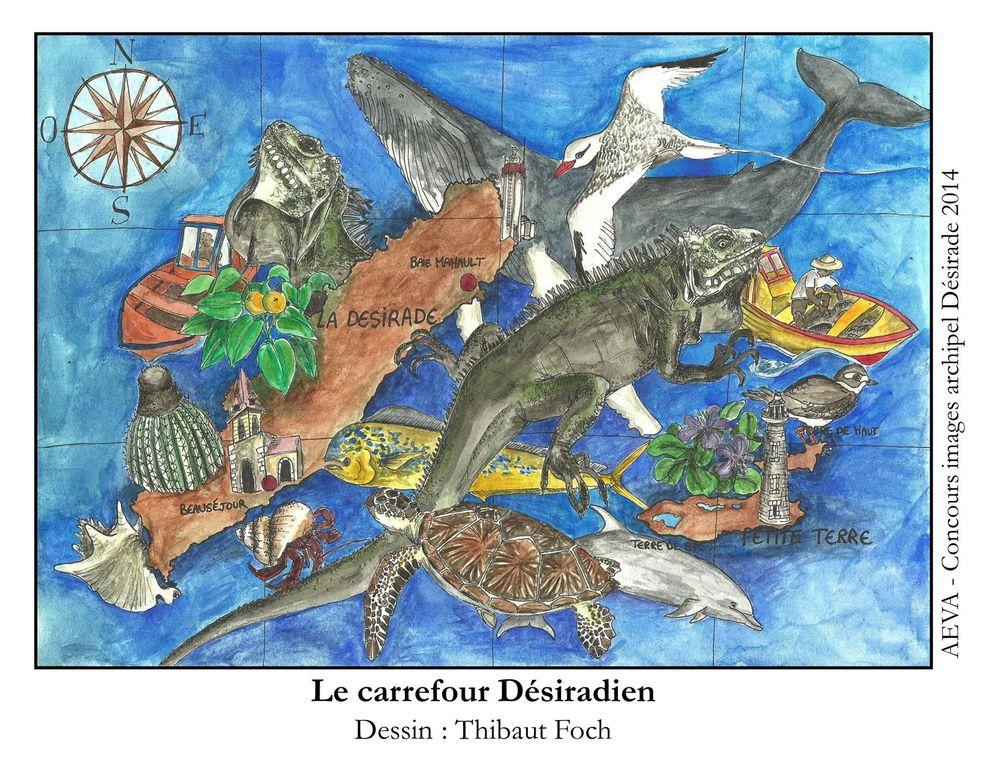 Album - 0- Concours dessin Désirade (adultes)