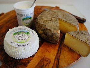 Mes bonnes Adresses - La bergerie fromagerie de brebies de la Belloire