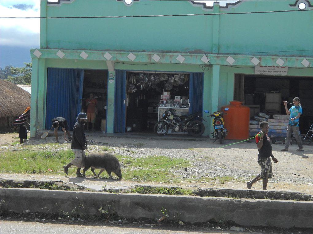 Wamena et environs de Wamena,