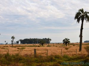 Ruta 15 (Uruguay en camping-car)