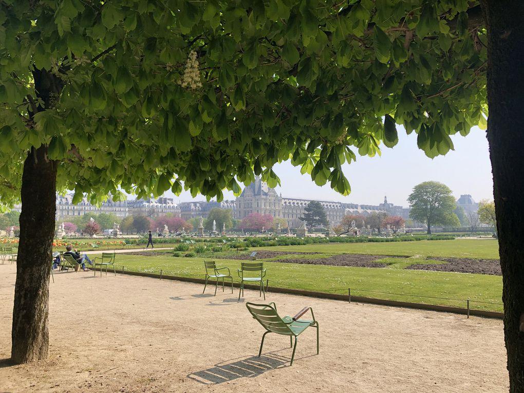 Promenade à Paris, jardin des Tuileries, les bords de Seine, l'île aux Cygnes...