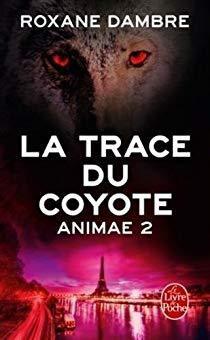 Trilogie 'Signé Sixtine' - Les échos de l'au-delà - tome 2 - de Roxane DAMBRE
