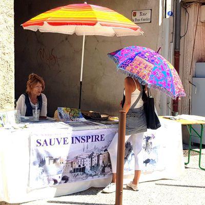 """Un forum des associations tout en couleurs avec """"Sauve inspire"""", ce samedi 5 septembre"""