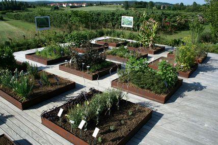 Jardins fruitiers de Laquenexy Visite guidée le 1er septembre