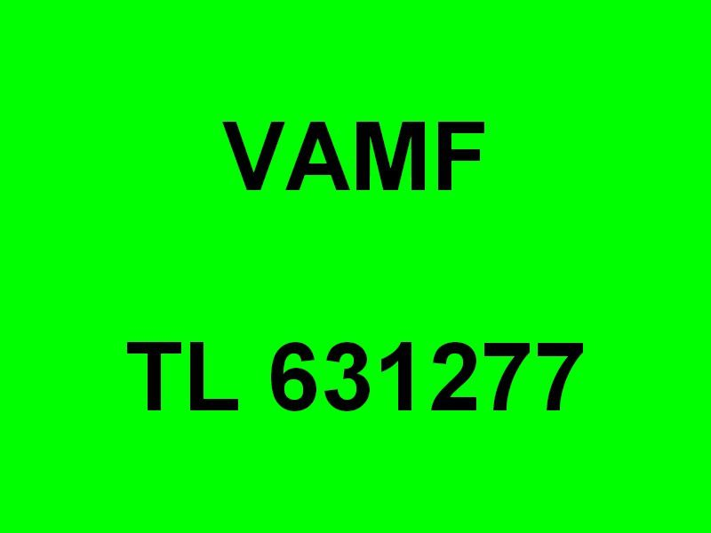 VAMF  TL631277 , a quai dans le port de Hyères (Var) le 17 ocbre 2019
