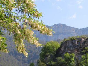 La Montagne de Glandasse qui culmine à 2041m au-dessus du village