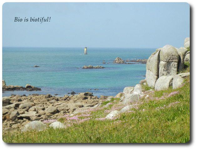 Ile de Batz - Finistère - Bretagne