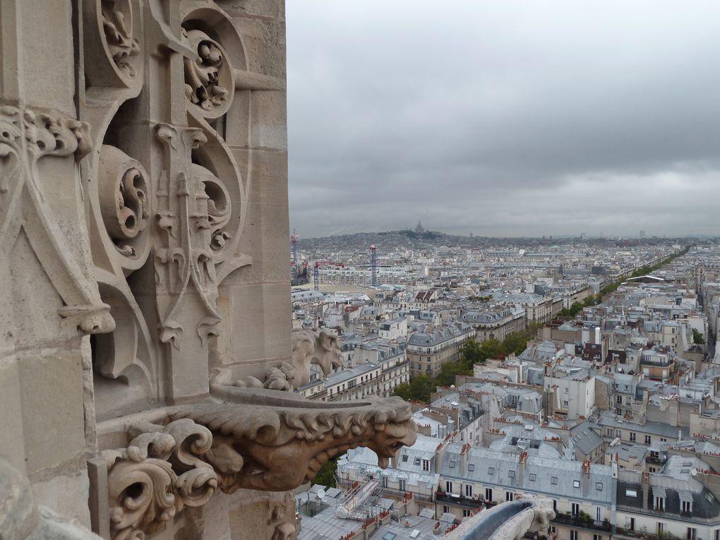 Visite de la tour Saint-Jacques et vue panoramique sur Paris. Notre-Dame, le centre Pompidou, la Conciergerie ...