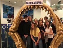 SMSL19 Environment Tropicarium