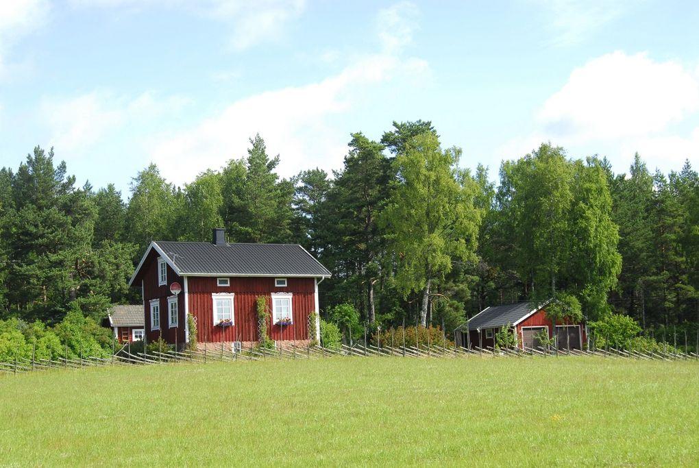 les vacances des mulots aux Aland en 2008