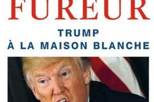 Le feu et la fureur, Trump à la maison blanche, de Michael Wolff