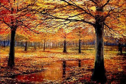 C'est l'automne !
