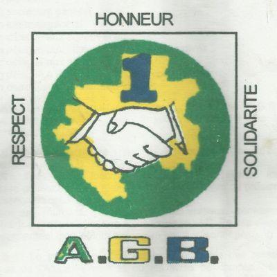 Association des Gabonais au Bénin