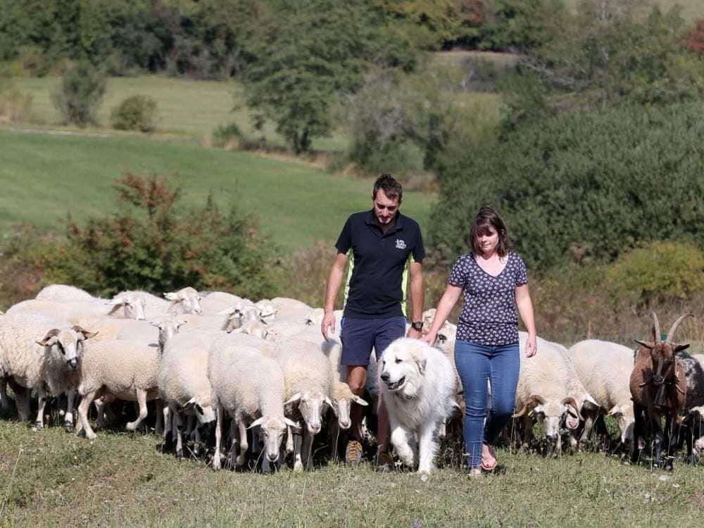La Bergerie de la Combe à l'Ours (Arc Sous Montenot) parmi les fermes préférées des Français
