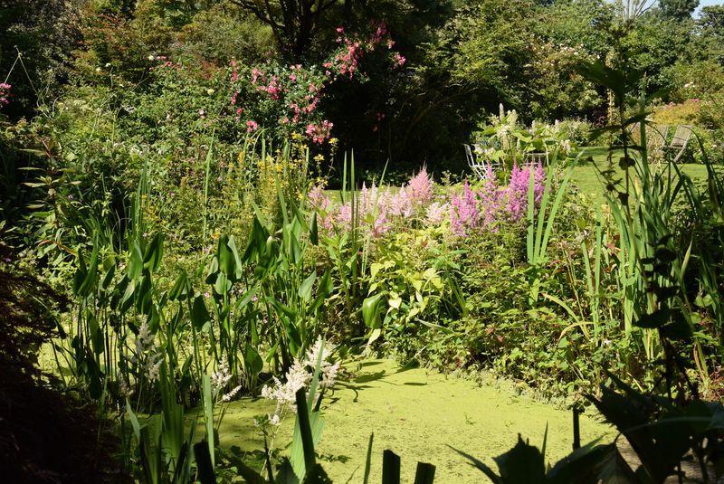 Trois jours dans les 7 vallées. Jour 2 (suite) : Le jardin des lianes