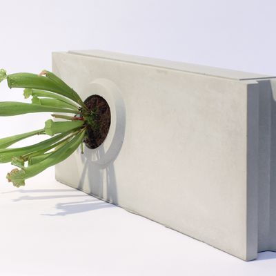 14 Ways To Add Some Concrete To Your Life