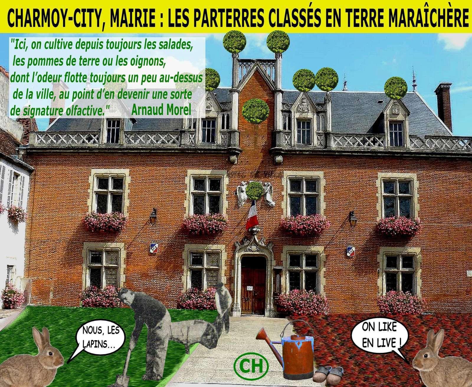Charmoy-City, mairie, les parterres classés en terre maraîchère .jpg