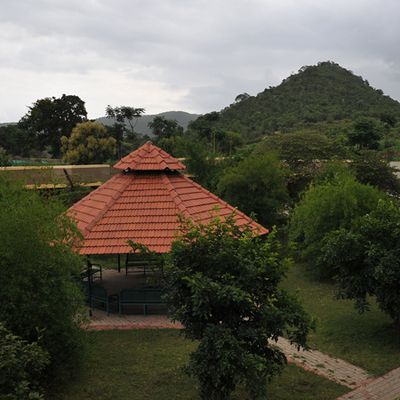 Best Bandipur Jungle Resorts – Making Your Stay Comfortable At Bandipur National Park India