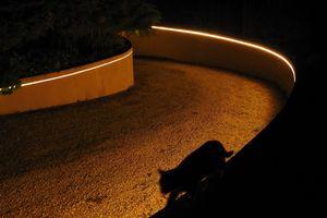 Contre la pollution lumineuse : ma sélection d'éclairages pour le jardin