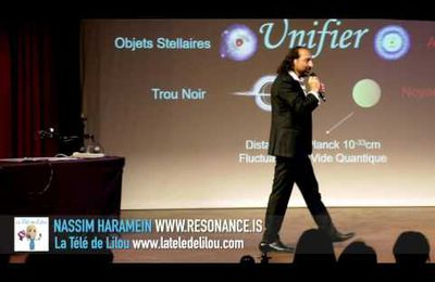 L'UNIVERS CONNECTÉ: La Solution de masse holographique et la Source de la Conscience NASSIM HARAMEIN