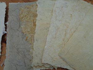 Livre de feuilles assorties de plumet mixé ou non, d'été ou d'hiver , gaine ......