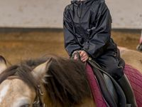 Stage Equitation Comines - 29 juillet