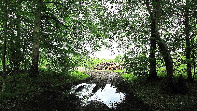 Helico_les Chemins du Plessis-Brion et de la Voie de l'Eau