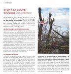 CVLM - Article Cap Meyzieu - Grand Large