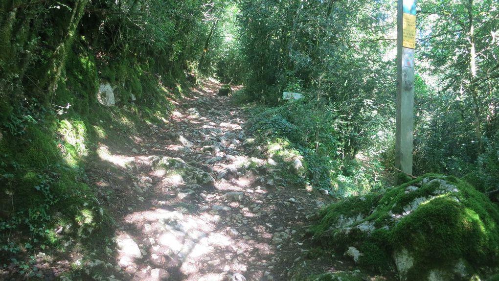 3 septembre etape 8 de St Martin en Vercors à Die 72 km