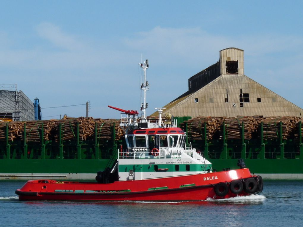 BALEA , Remorqueur du port de Bayonne