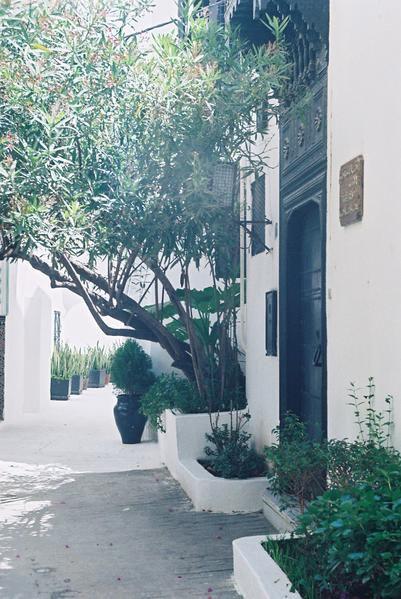 La ville de Tanger dans ses heures joyeuses.