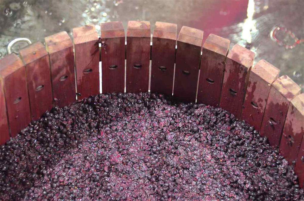 Château MARTINHO (Listrac), un micro-cru pour un vin Haute Couture
