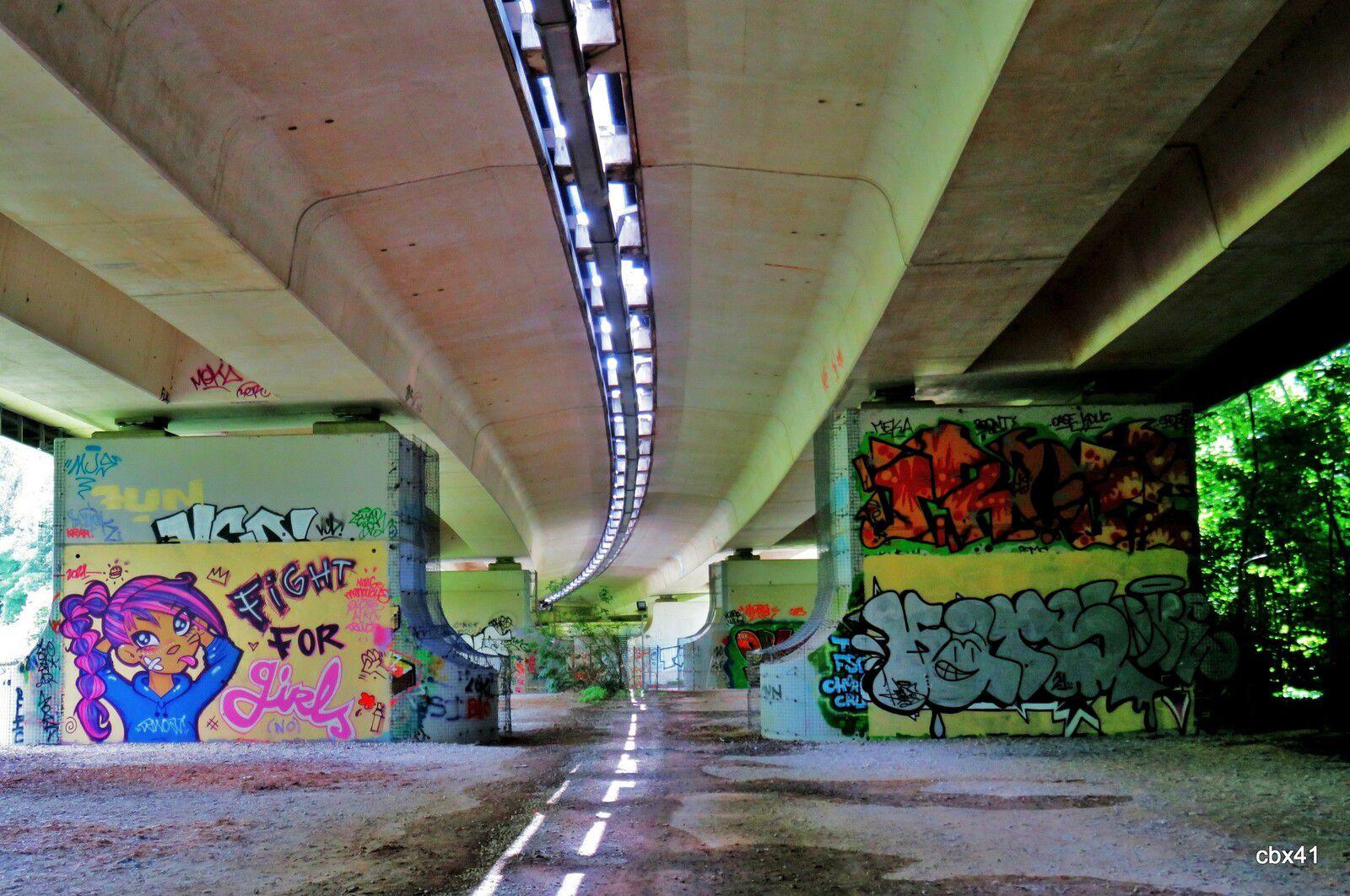Graffs du Viaduc autoroutier de Montesson, Yvelines (2/5)