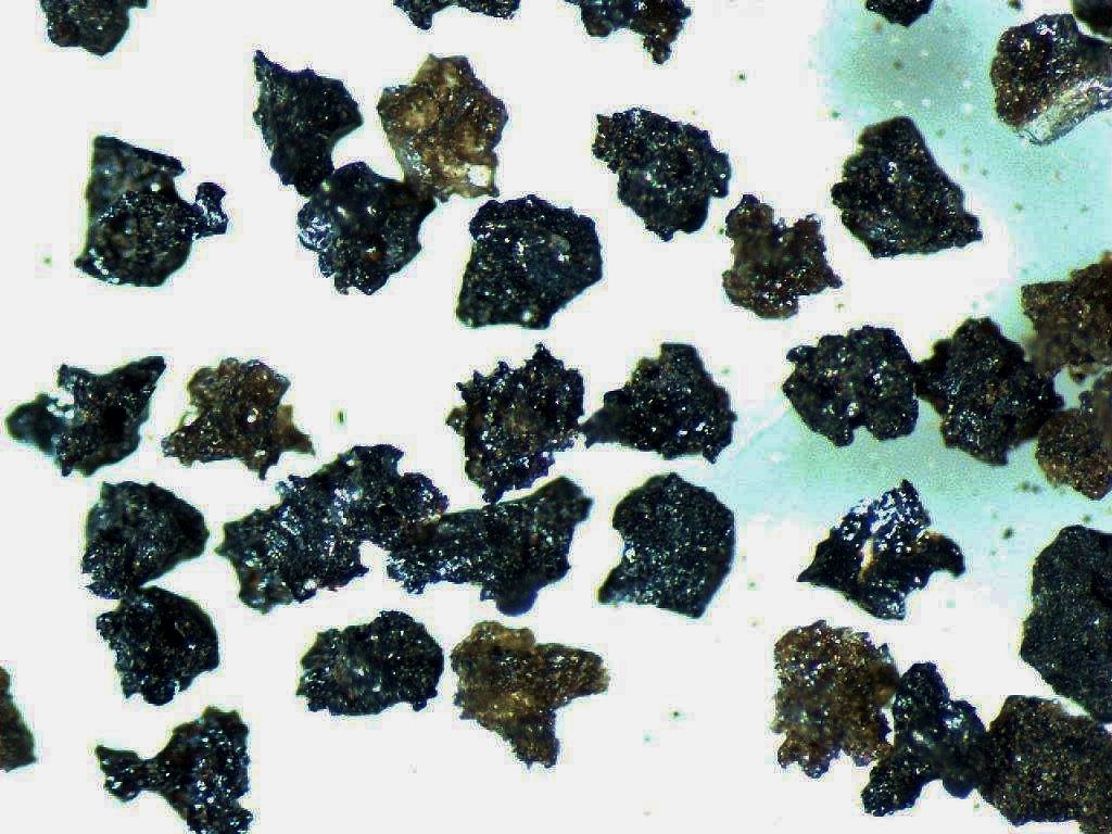 Volcanic ash from Nishinoshima collected in July 2020, when the island was in a violent eruption, shows how the magma was fractured into irregular shapes. (Provided by the Earthquake Research Institute of the University of Tokyo)